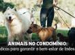 Animais no condomínio: dicas para garantir o bem-estar de todos