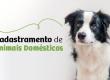 Comunicado 011/2020 - Cadastramento de Animais