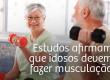 Estudos afirmam que idosos também devem fazer musculação